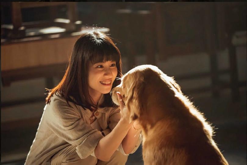 連俞涵在新戲中與許多動物明星有對手戲。(圖/LINE TV提供)