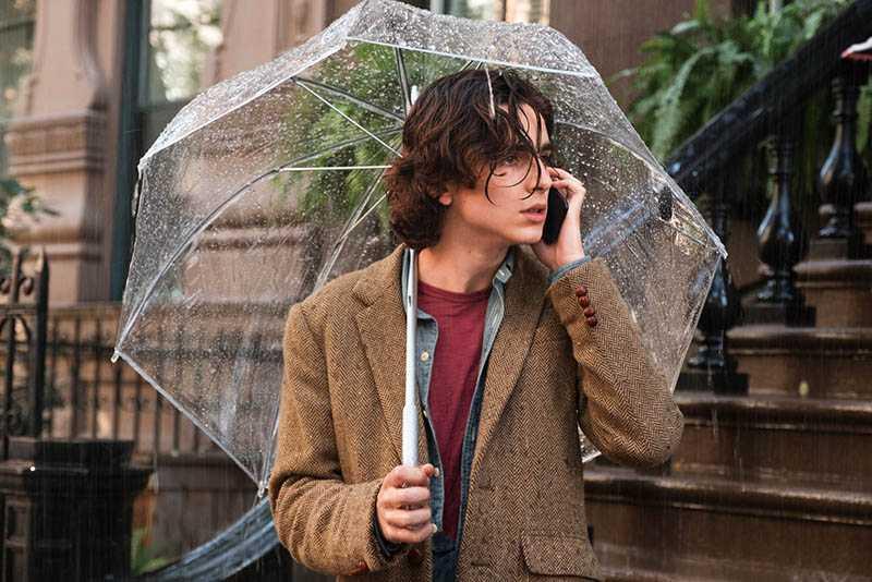 憑《以你的名字呼喚我》紅遍全球的提摩西夏勒梅,在《雨天.紐約》繼續展現帥氣身影。(圖/甲上娛樂提供)