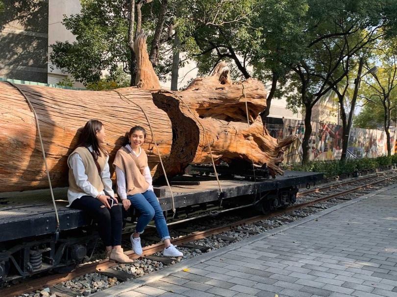 樹齡800年的紅檜風倒木,展示在運材平甲車上,成為「嘉義製材所」最佳打卡點。(圖/官其臻攝)