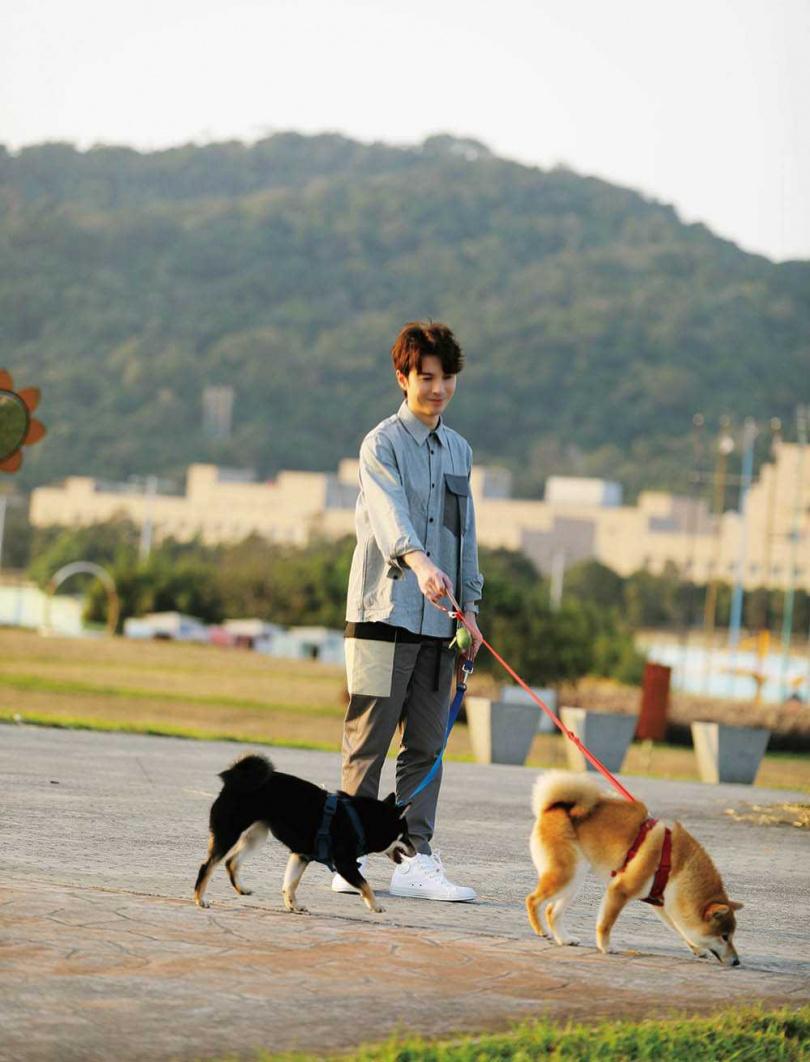 愛狗的陳勢安去年在台灣領養2隻柴犬,過去在家鄉馬來西亞也養了2隻雪納瑞犬。(圖/索尼音樂提供)