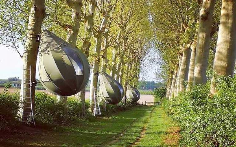 竟然「懸掛在樹上」!隱身於森林中的「眼淚帳篷」,彷彿來到童話世界!