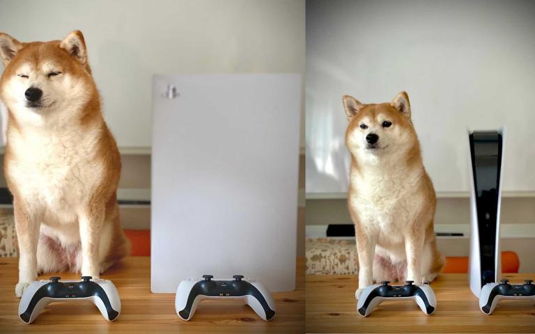 想知道PS5的實機有多大?大概就跟一隻柴犬差不多!