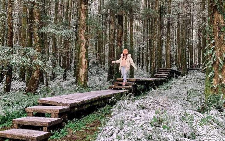 身為台灣人好幸福!宜蘭4個賞雪祕境曝光 趁下一波寒流來襲前快去卡位吧!