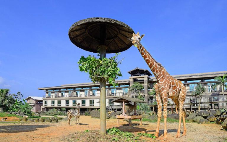 開窗就有長頸鹿!關西六福莊含早餐、2日遊樂園 每人2千有找