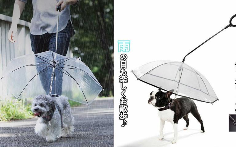 雨天遛狗也沒問題!下雨也能帶著狗狗輕便散步的「寵物雨傘」