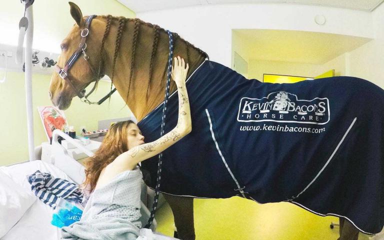 沒有賽馬天賦,卻能療癒人心的「馬醫生」!陪伴病人走完最後人生