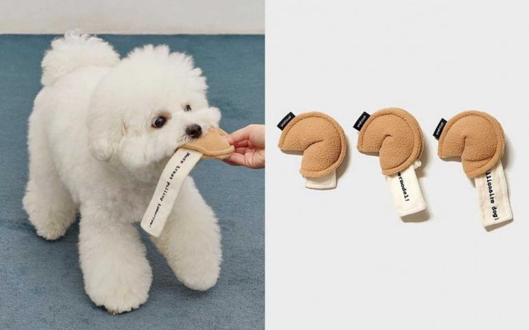 「你是全宇宙最可愛的小狗狗」!毛孩專用「幸運餅乾」超爆笑,奴才還不快掏錢買起來!