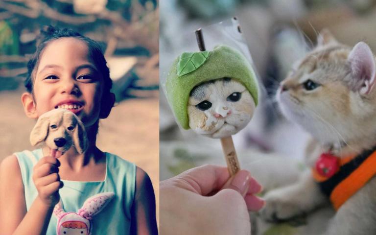 怎麼捨得吃!泰國IceDEA超逼真寵物冰棒