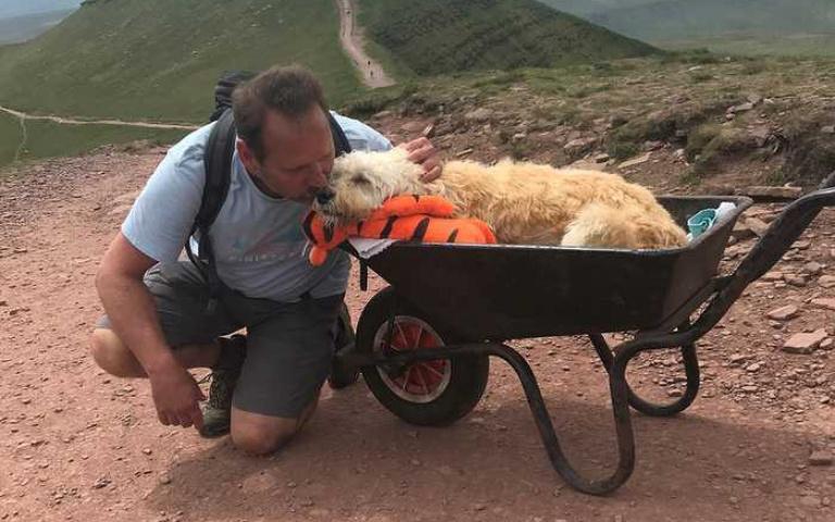 最後的旅程!愛犬血癌末期「坐推車」與把拔「成功登頂」,路人爆哭「接力一起推」!