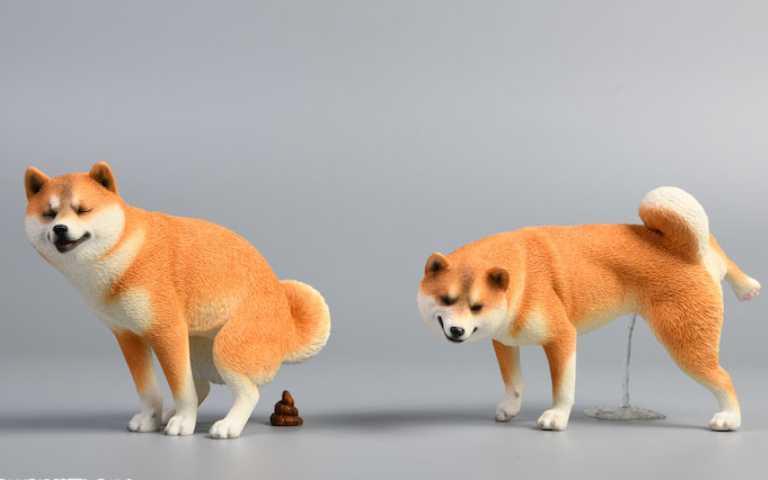 柴犬控集合啦!JxK Studio 6款擬真柴犬如廁模型,舒暢表情超幸福~