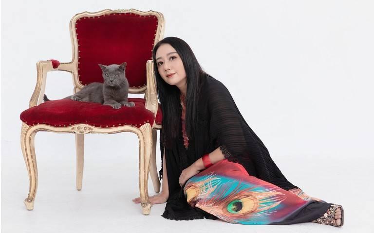 寵物情緣/高慧君的山中奇遇 那些年貓咪教會我的事