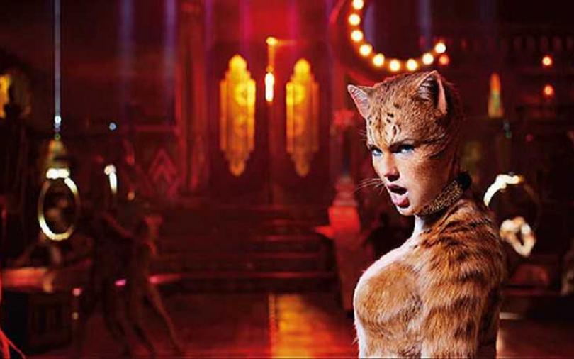 泰勒絲 貓奴魂爆發