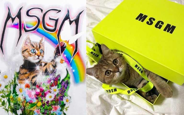 貓奴必收!MSGM推出超萌「喵星人」印花上衣!太可愛必須收!
