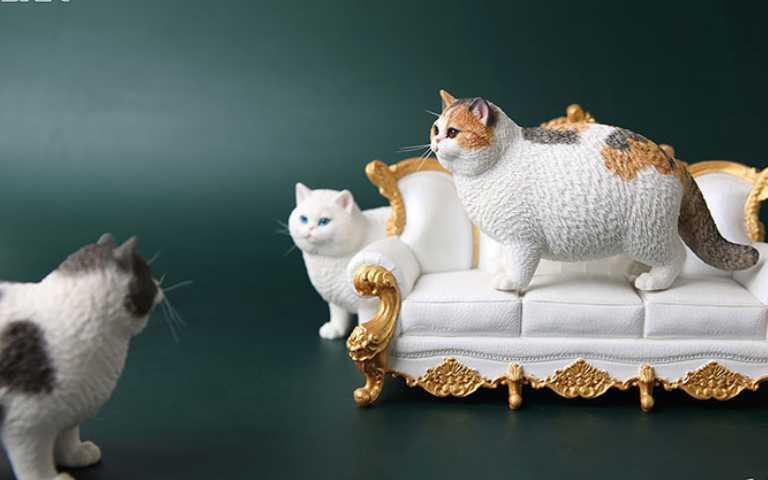 JxK Studio再推「擬真動物」模型,肥貓系列簡直就跟「阿嬤養的」一樣!