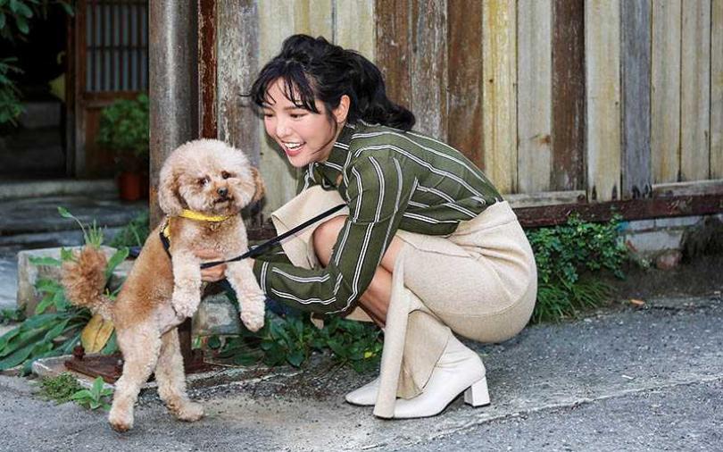 【寵物情緣】還好遇貴人 何美花光身家搶救狗寶貝