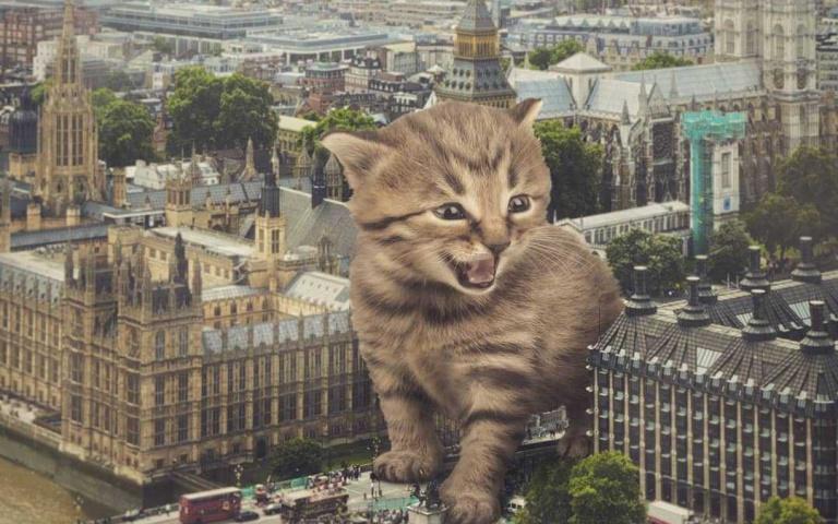 逼逼逼!巨無霸貓咪佔領人類地盤 史上最萌的怪獸就是牠了!