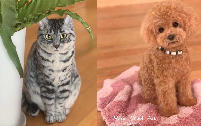 既不是標本,也不是真的貓貓狗狗!而是栩栩如生的羊毛氈