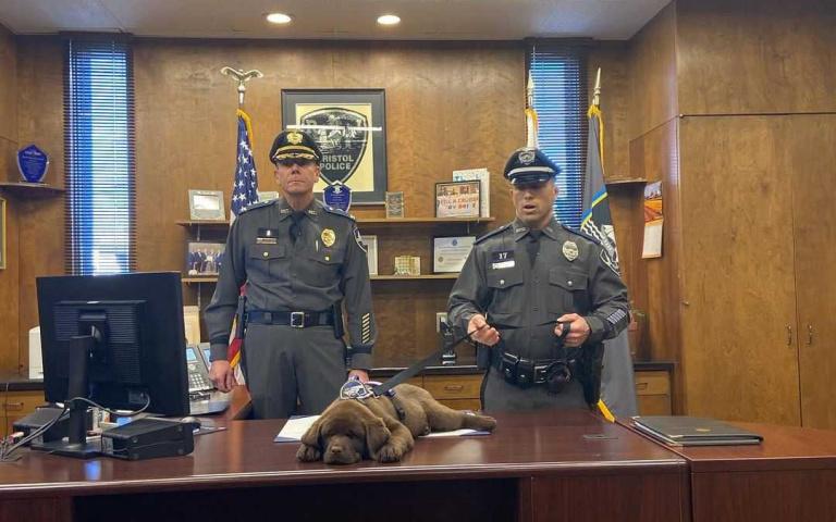 你就做到今天!小警犬就職典禮上「睡到翻肚」,秒遭警局解雇「轉行去吧」!