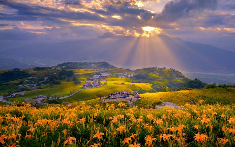 坐擁黃金花海 悠遊山中歲月