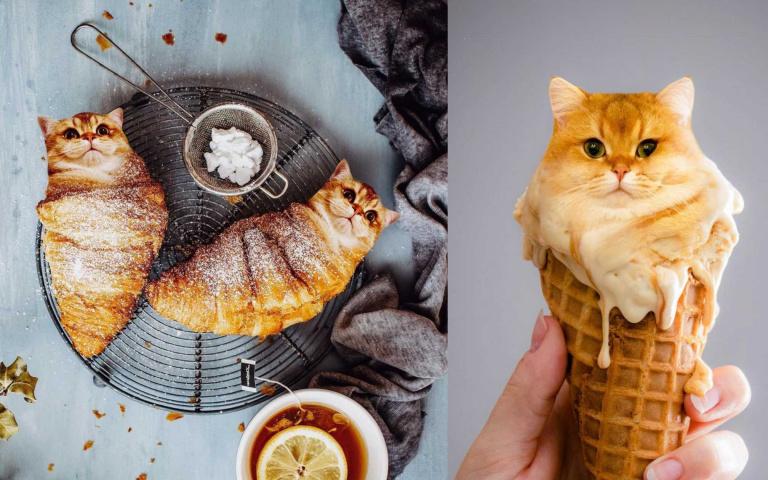 當「喵星人」與「美食」MIX在一起,畫風就是這麼呆萌又奇幻!
