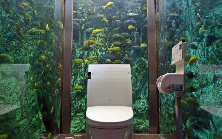 超有衝擊性!超狂餐廳打造「水族箱廁所」,300隻魚和烏龜盯著你「釋放壓力」!
