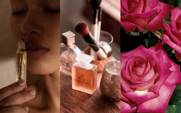 女生最愛的玫瑰精油優點是什麼?哪些人不適合?最佳用法一次告訴你!