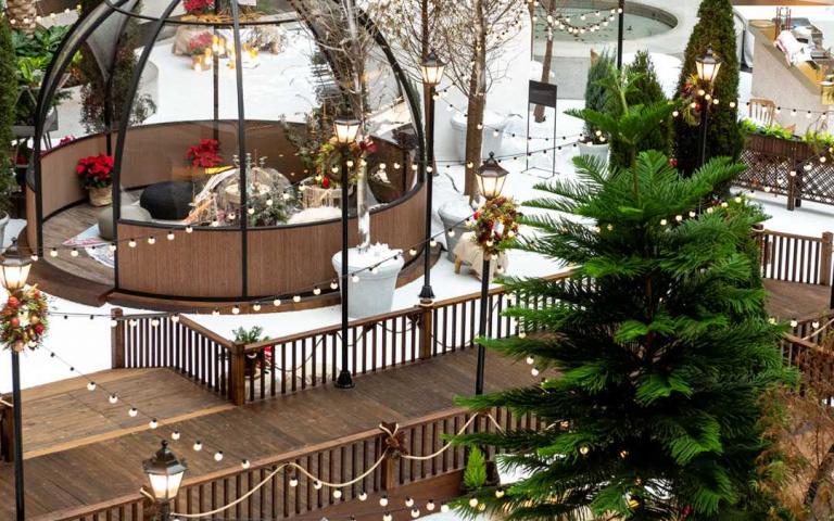 耶誕節狂熱者看這邊!盤點2020全台必打卡聖誕樹 超夢幻「水晶冰屋」一秒飛到歐洲去