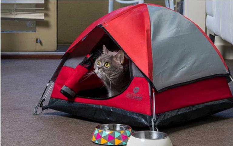 喵皇行宮登場!專為貓咪設計的帳篷,等比縮小顏值高又實用!