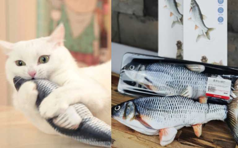 疫情在家陪玩到很厭世?活跳跳「鮮魚」逗貓玩具獵奇登場,恭喜主人總算能去睡一下啦!