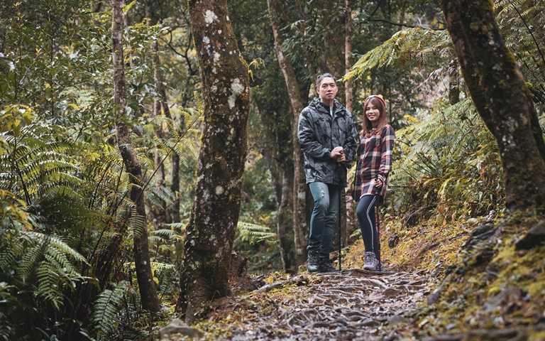 發現祕境 山林共遊一同許下新年心願!