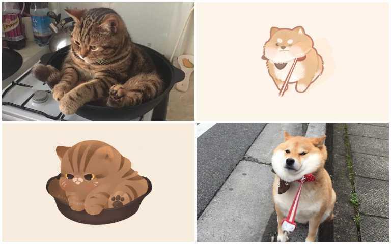 萌翻天啦!療癒插畫模擬動物日常,柴柴、謎樣貓越看越可愛!