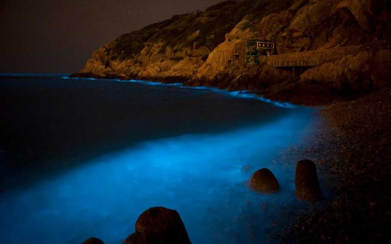 雙月灣的海洋哭了!想「追淚」不必飛出國 再等兩個月馬祖「藍眼淚」看好看滿!