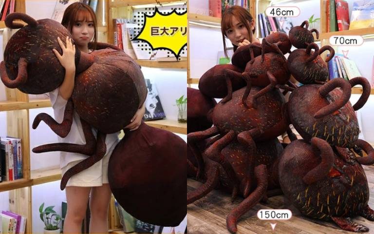 成為「蟻人」不是夢!超巨大「螞蟻抱枕」,抱著躺著都超舒適!