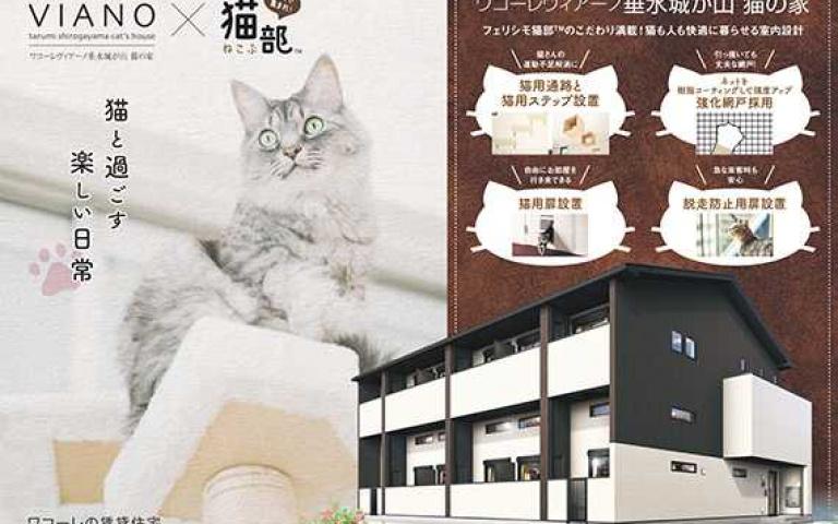 主子:奴才我要這間!日本專門為貓奴設計的公寓