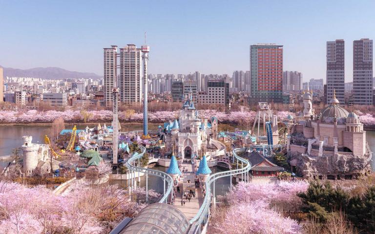 美到以為是P圖!韓國樂天世界下起櫻花雨,每張照片都能當桌布!